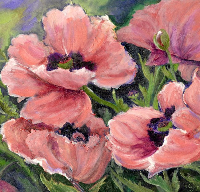Poppies, Acrylic on Canvas
